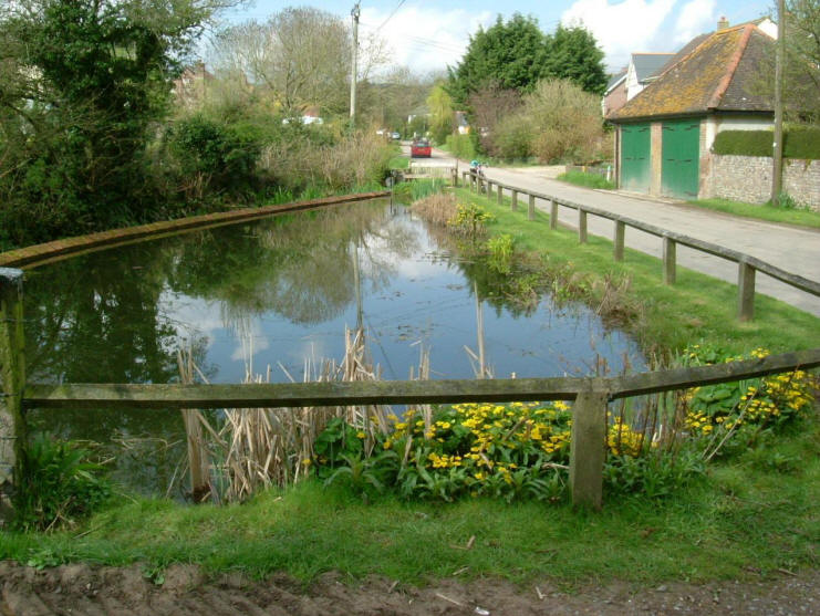 Winterborne houghton millenimum pond project for Design agency pond